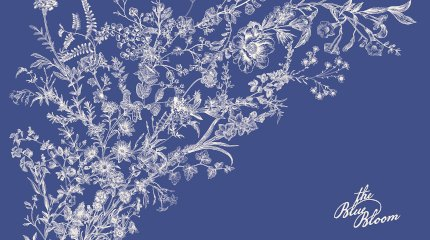 JAC The Blue Bloom Linesheets